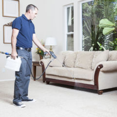 Carpet-Cleaning-000024091383_Large-1
