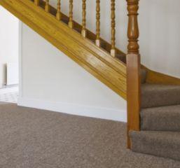 Polyester and Polypropylene Carpets