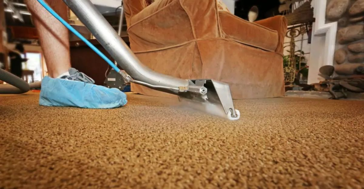 Steam carpet and rug cleaning